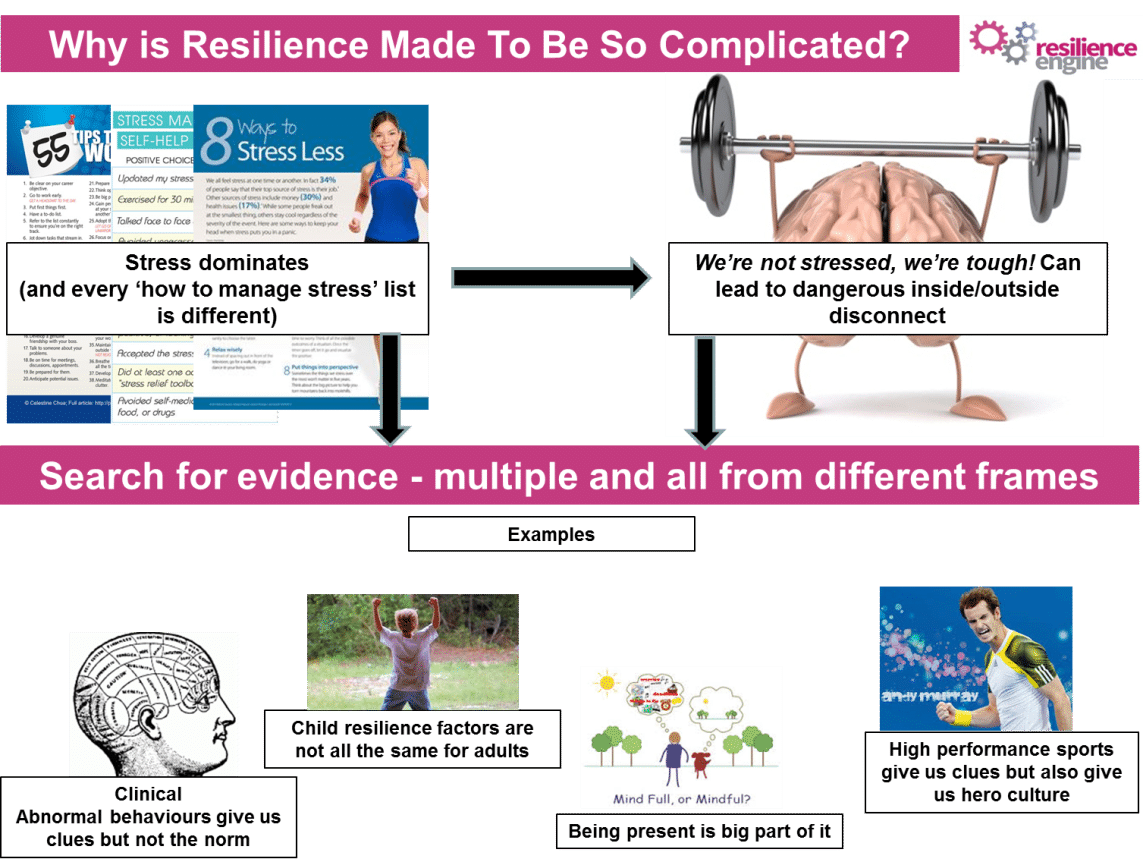 The Simplicity of Resilience, The Resilience Engine