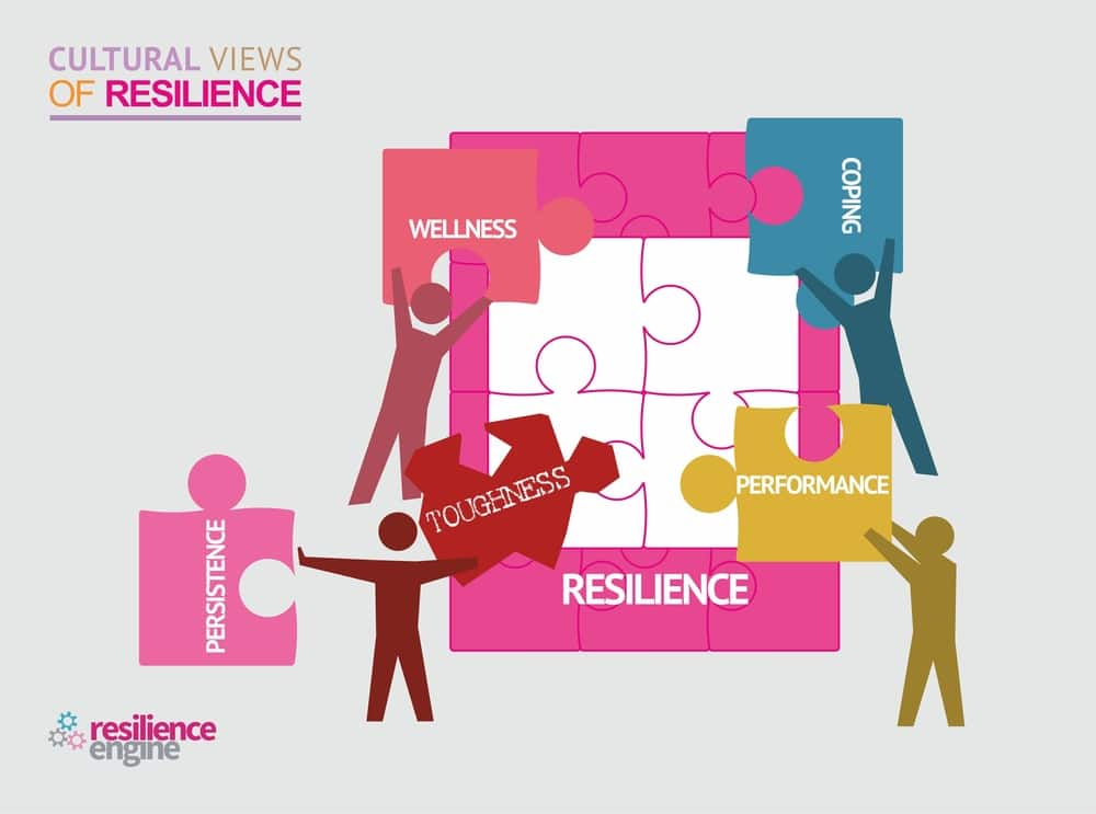 Resilience Engine, Resilience Engine Cultural Views of Resilience