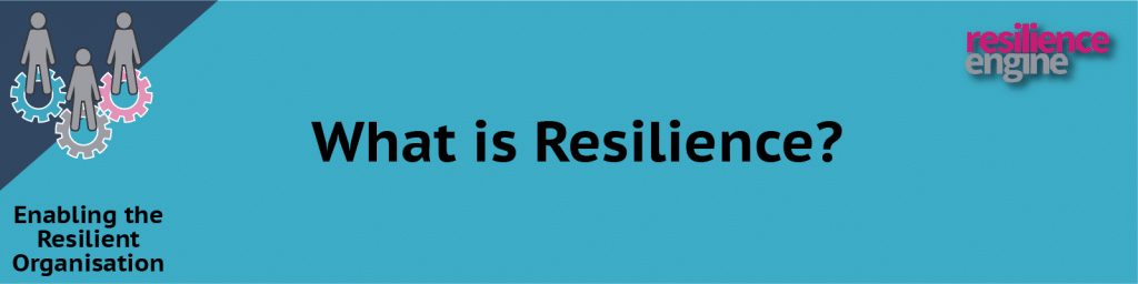 Resilience Engine, Resilience Engine Publications, Resilience Engine New Blog Post, What is Resilience