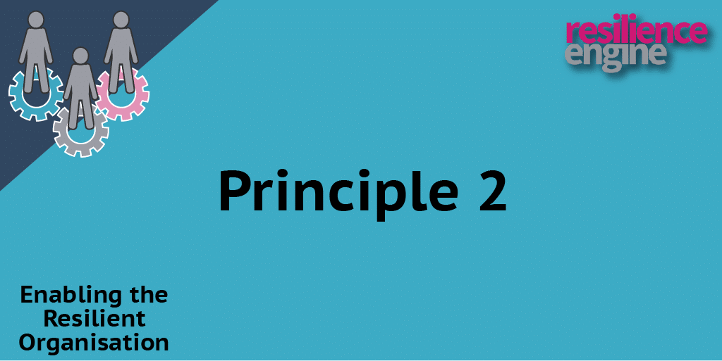 Resilience Engine, Resilience Engine Blog, Resilience, principle 2, resilience engine article, resilience article
