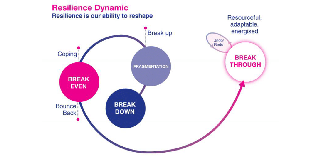 Resilience Dynamic August 2015