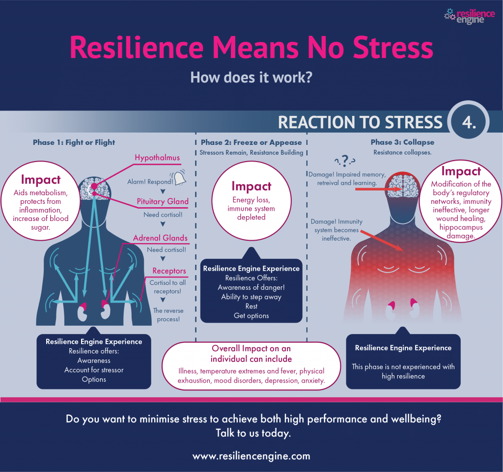 causes of stress, stress, awareness, fight the stress, how to cope
