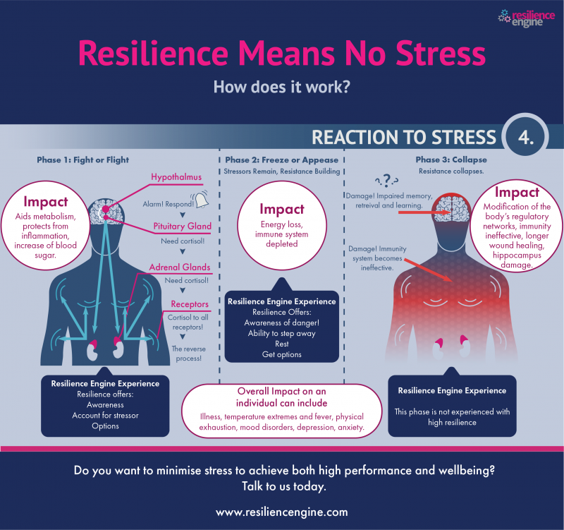 Resilience means no stress – Week 4